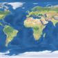 BOLDS: Map of specimen collection locations for <em>Platypodinae</em>